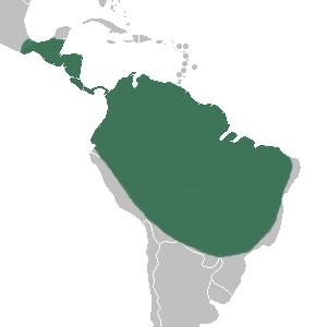 Phragmipedium_distribution_map
